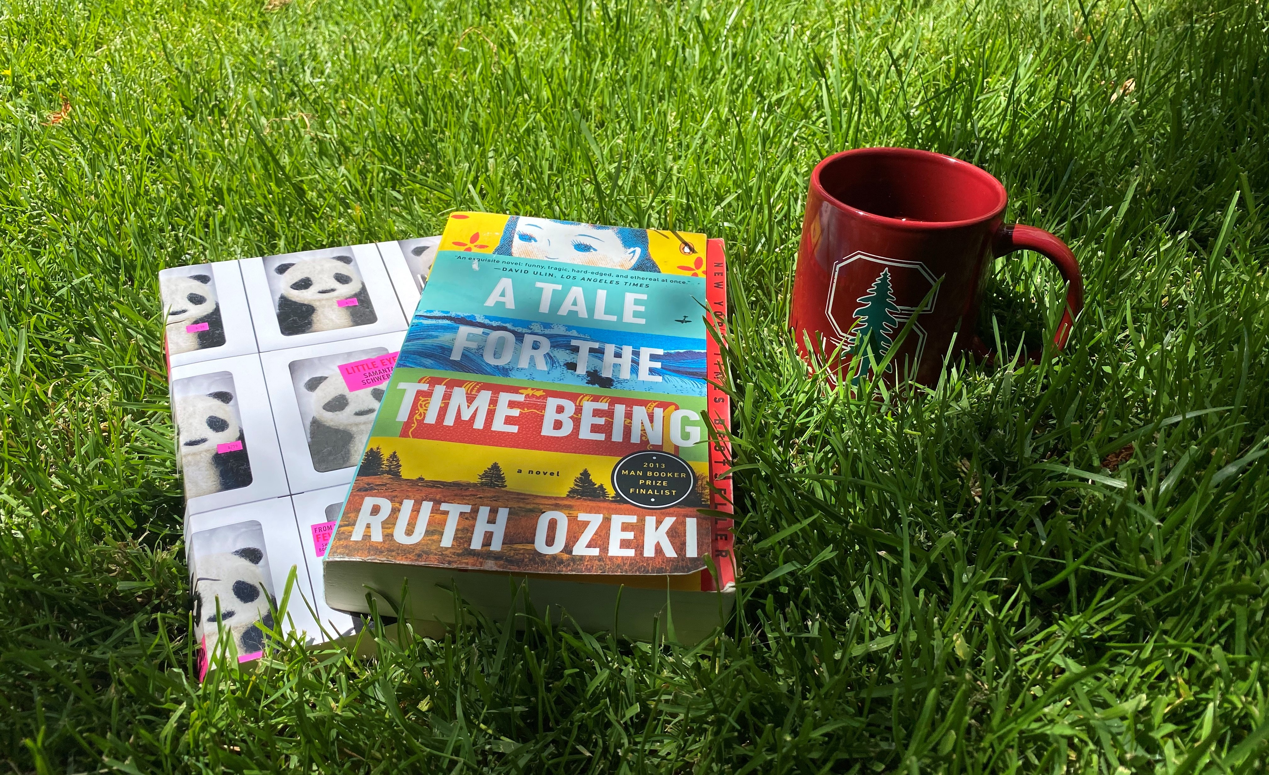 Two books, Littles Eyes and A Tale for the Time Being, in the grass next two a Stanford mug
