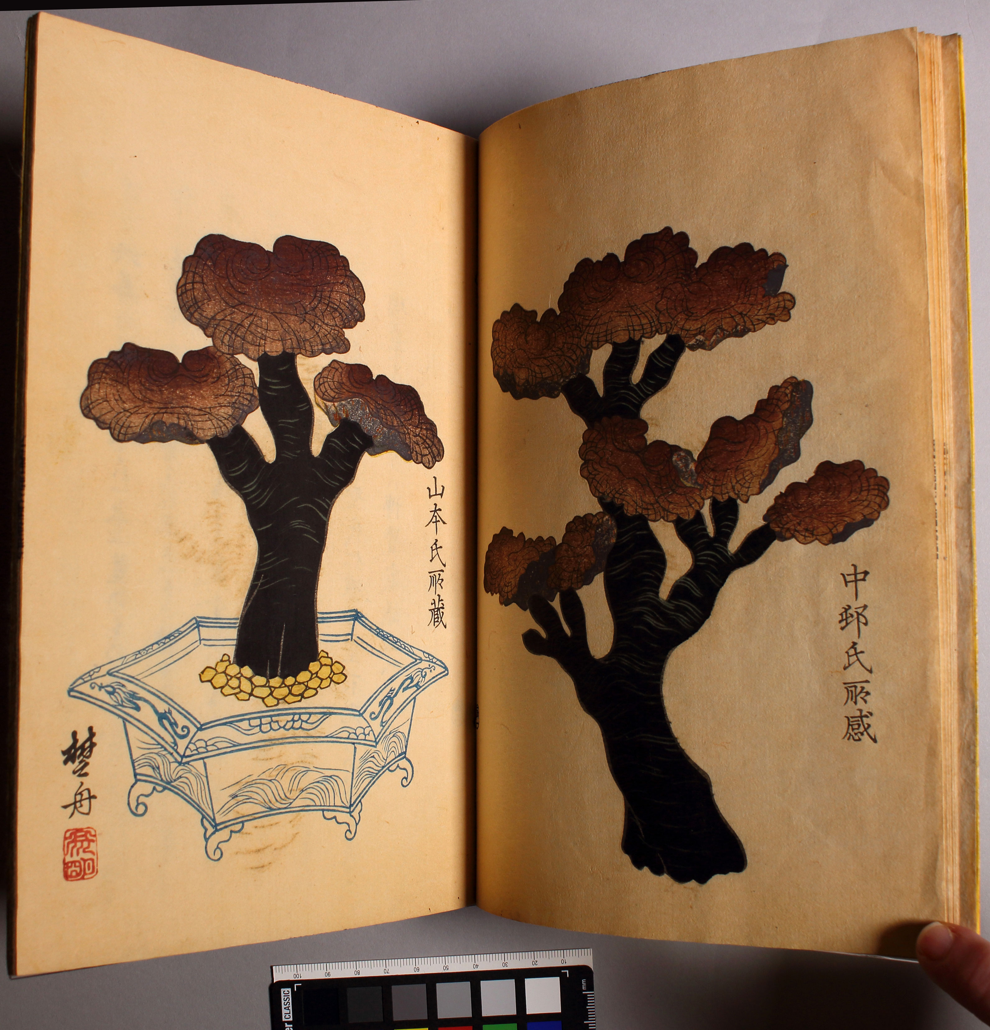 Rare Japanese book on display at Cantor Arts Center
