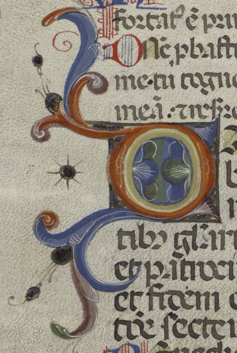Detail from a fragment of a missal (1100–1499). (Image: Dept. of Special Collections and University Archives, Stanford University Libraries)