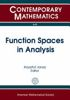 Function spaces in analysis