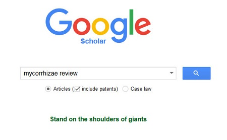 Google scholar review