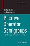 Positive operator semigroups