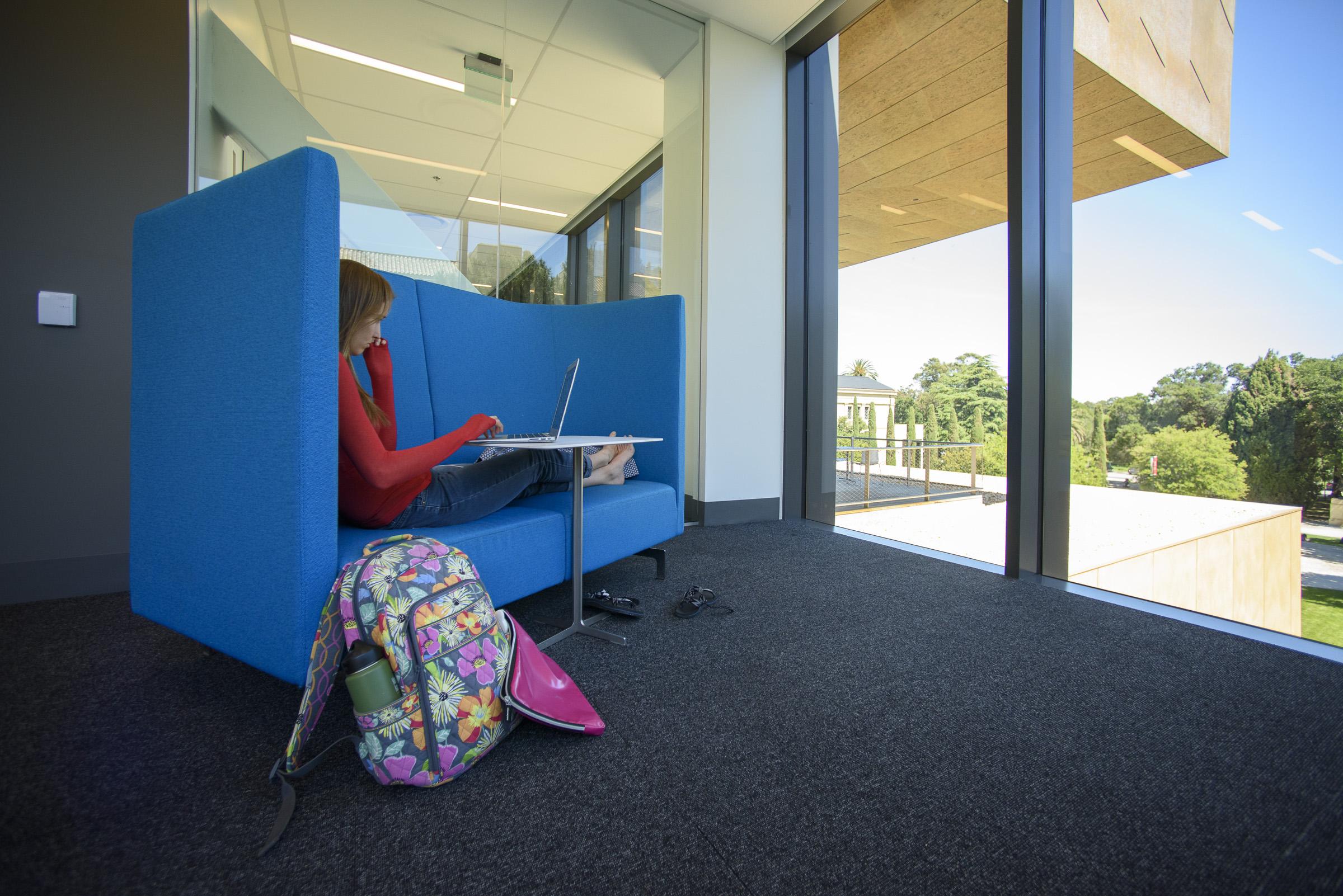 student studying in the Bowes Art & Architecture Library. Photo: L.A. Cicero