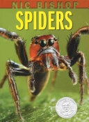 Cover of Spiders