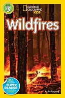 Cover image of Wildfires