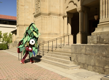 Stanford Tree visiting Green Library