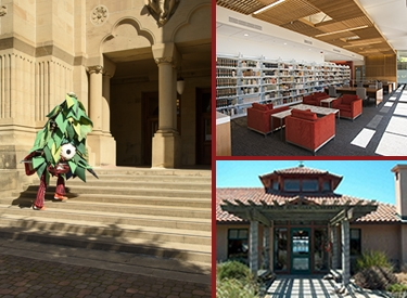 Green, East Asia, and Miller libraries
