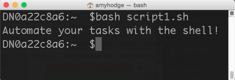 Screen shot of the terminal window showing a script that has run