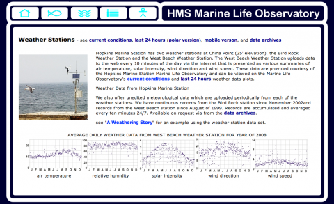 Hopkins Marine Station Marine Life Observatory web site screen shot by Amy Hodge
