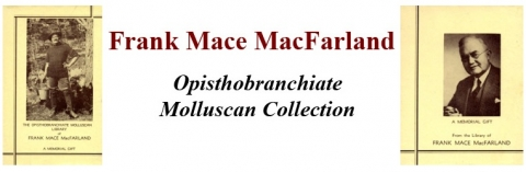 Frank Mace MacFarland Opisthobranchite Collection