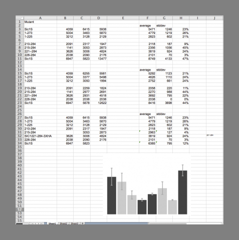 Excel spreadsheet window with examples of poor practices, screen shot by Amy Hodge