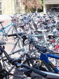 Bikes in front of Green Library