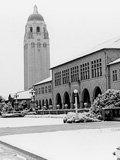 Snow on the Stanford campus in front of the School of Law (now Wallenberg Hall). Hoover Tower in the background.