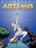 Cover image of Artemis : wild goddess of the hunt