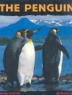 Cover image of The penguin