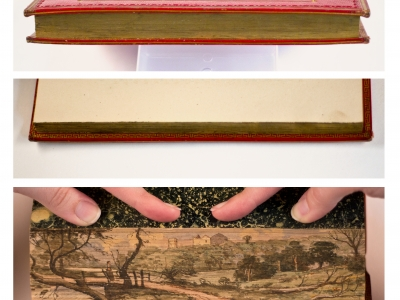 This unusual book had a painting literally hidden within its pages.